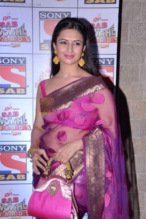 hpse_normal__3476341257_Divyanka Tripathi at Sab Ke Anokhe Awards red carpet in NCPA, Mumbai on 19th Aug 2013 (8)