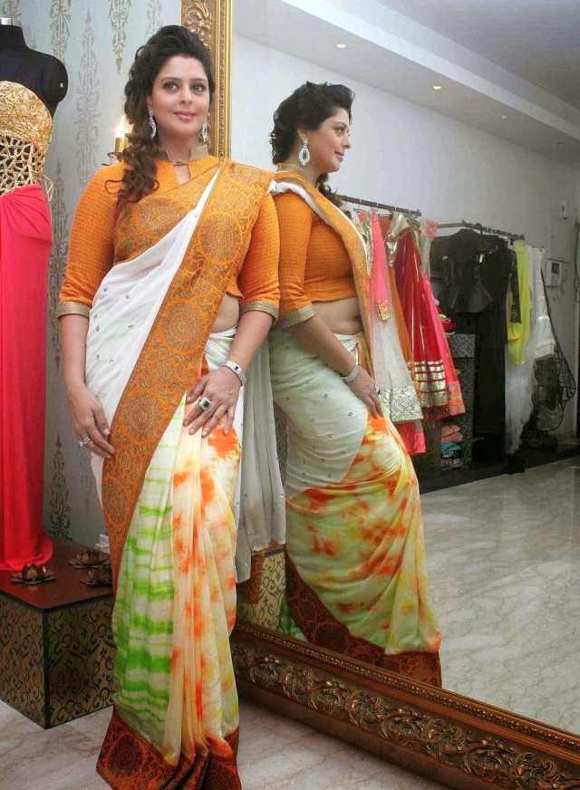 nagma-in-saree-photos-7 (1)