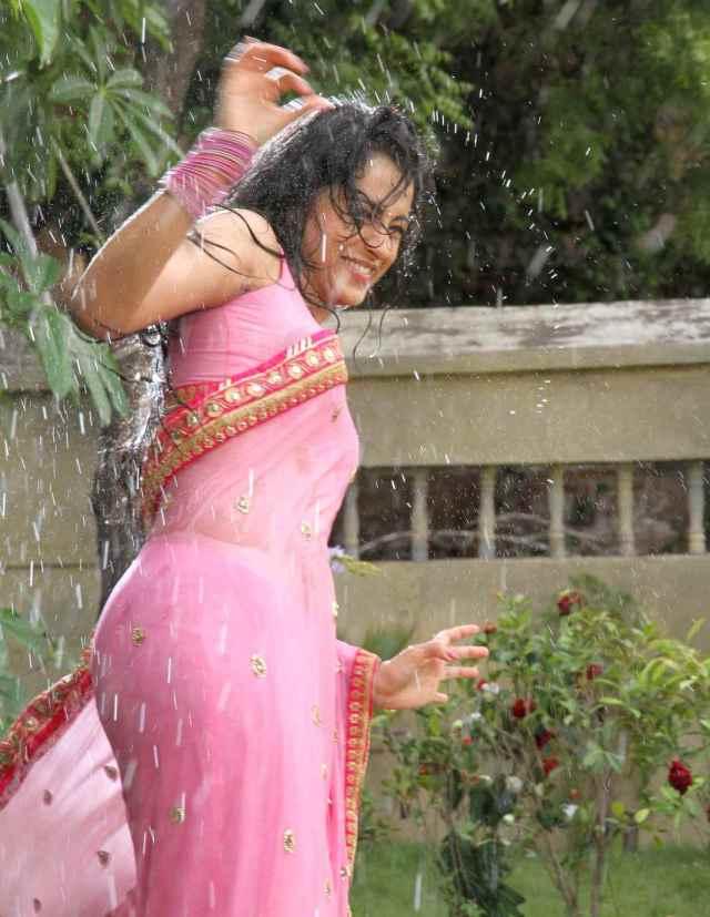 Actress Trisha Krishnan Wet Hot Ultra HD Photos in Pink Saree from Kalavathi Movie