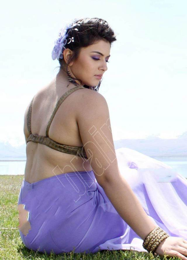 hansika-motwani-hot-pose