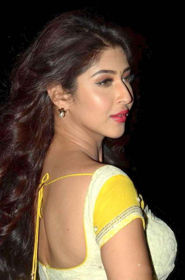 sonarika-bhadoria-actress-hot-saree-stills-56474